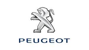 Peugeot Yağ Filtreleri