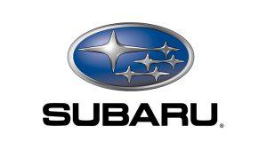 Subaru Hava Filtreleri